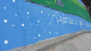 mural-suellacabras-jardin-alpartgata (49) - copia