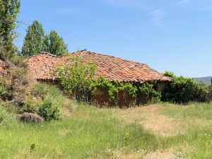 las-manos-de-la-tierra-torreblacos-julita-romera-alpartgata (135)