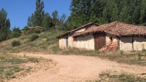 las-manos-de-la-tierra-torreblacos-julita-romera-alpartgata (148)