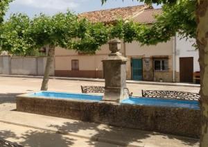 las-manos-de-la-tierra-torralba-del-burgo-julita-romera-fortaleza (14)