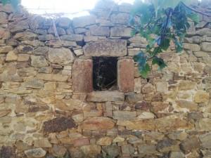 las-manos-de-la-tierra-torrearevalo-linea-espana-vaciada (14)